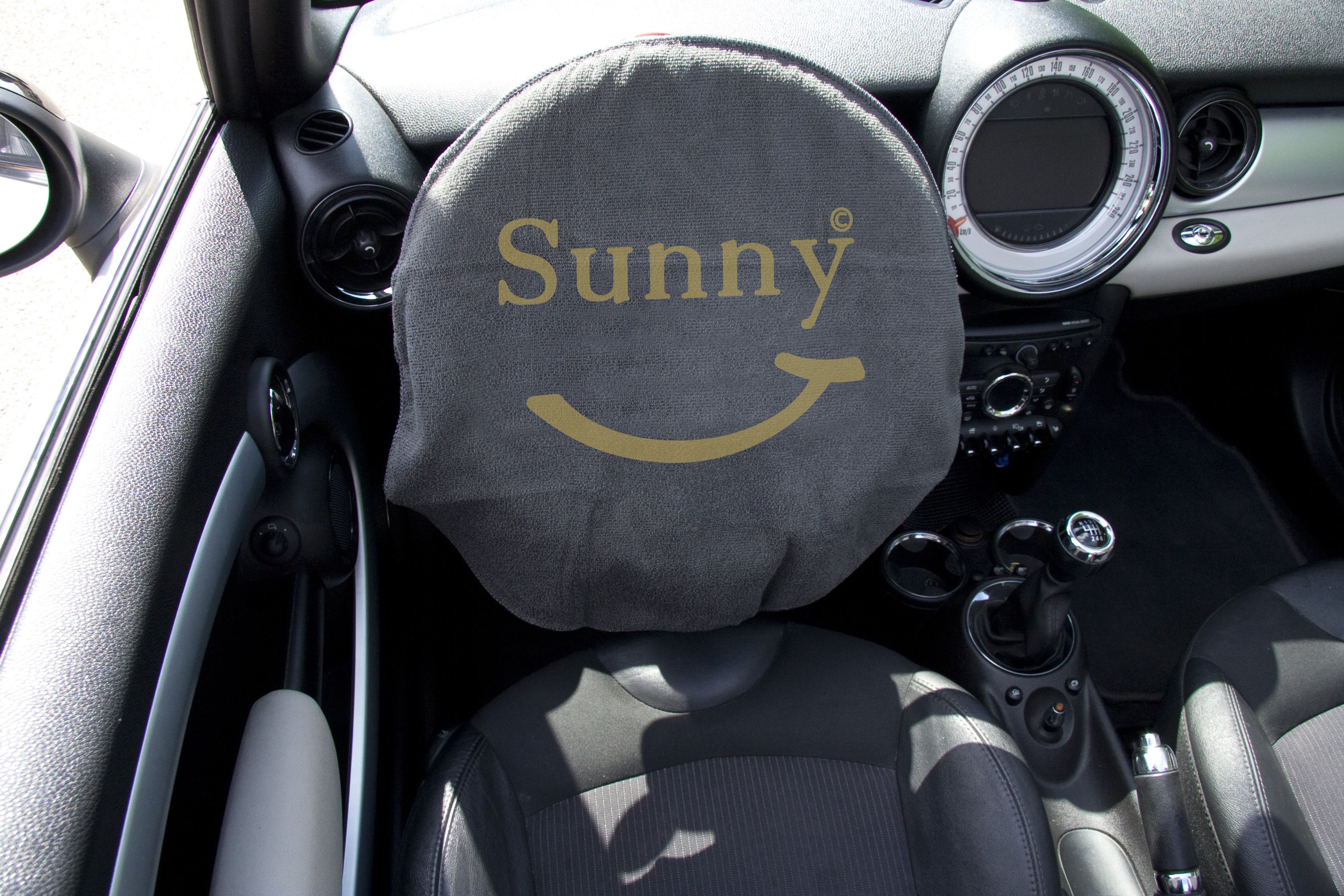 Sunny Lenkrad-Multituch